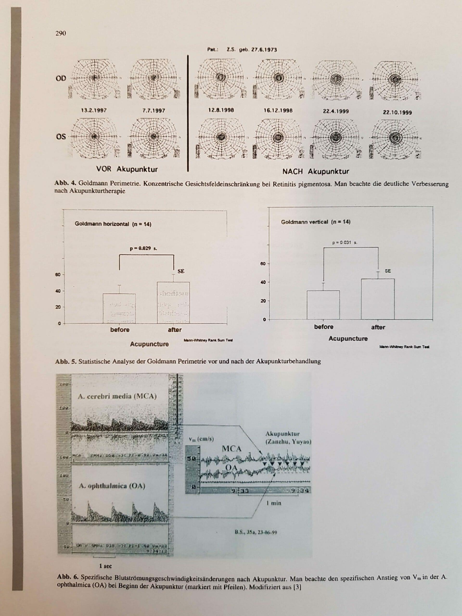 Prof . Litscher RP Forschung